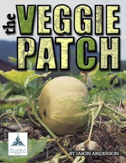 Veggie Patch Cover