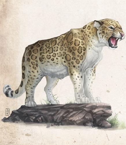 Auch gewöhnliche Tiere, wie ein Jaguar fanden ihren Weg in das Buch