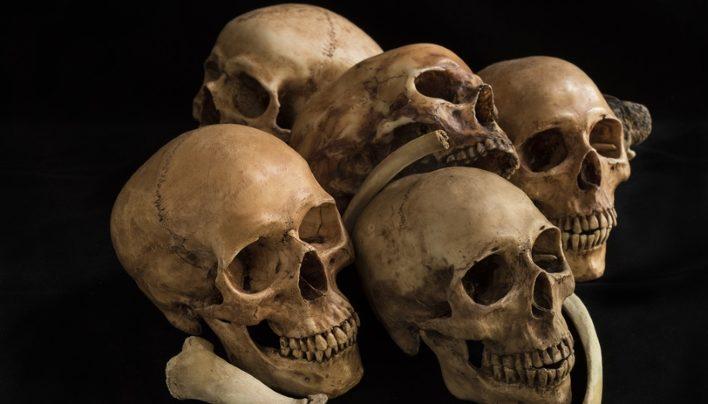 Der Tod ist erst der Anfang – Das Leben nach dem TPK
